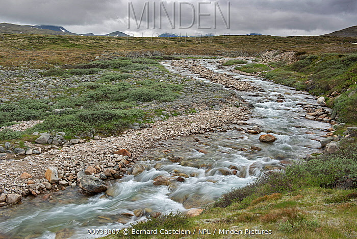 River and ice summer landscape between Hjerkinn and Snohetta, Dovrefjell, Norway, July