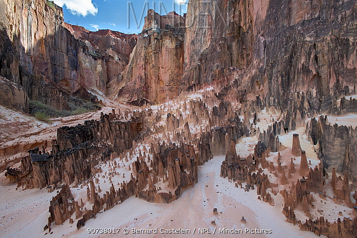 Ankarokaroka canyon landscape, Ankarafantsika National Park, Madagascar
