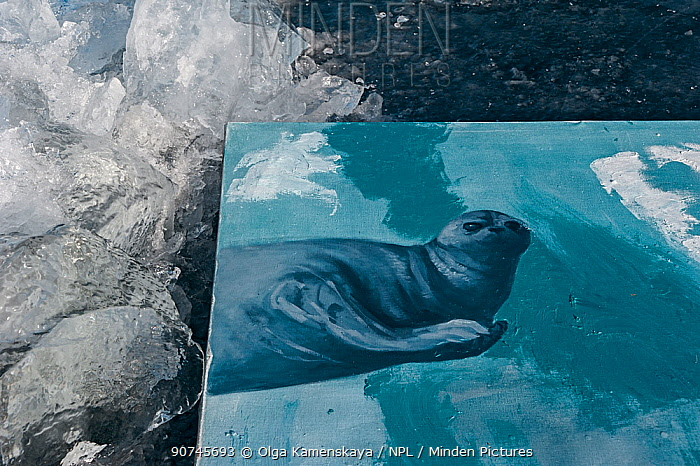 Painting of Baikal seal on Baikal ice, painted underwater, Lake Baikal, Siberia, Russia. March.