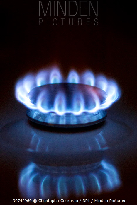 Flame of gas cooker in kitchen