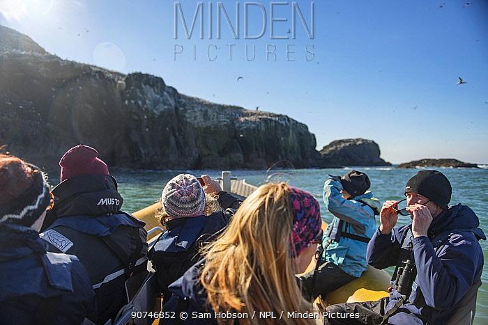 Team of RSPB volunteers approach Grassholm Island. Wales, UK. October