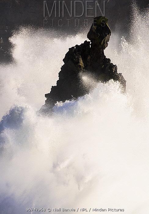 Storm waves breaking against cliffs at Sv�rtuloft, Iceland April 2016.