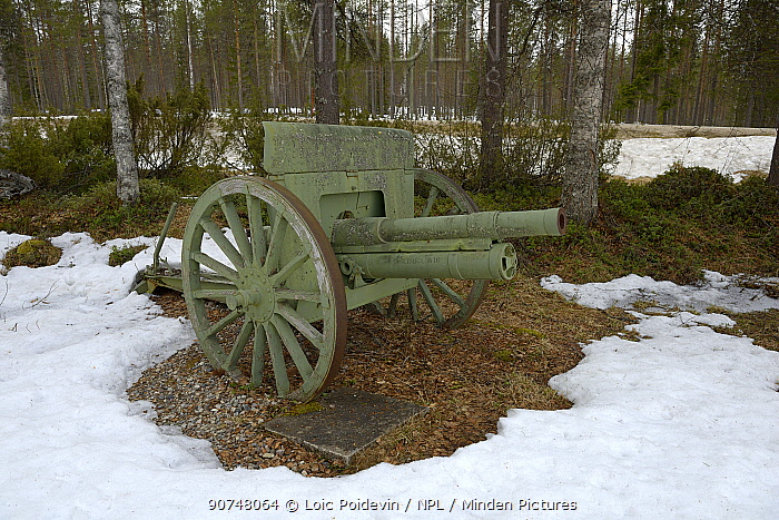 Old canon on display outdoors in snow, Museum Raatteetie, Finland