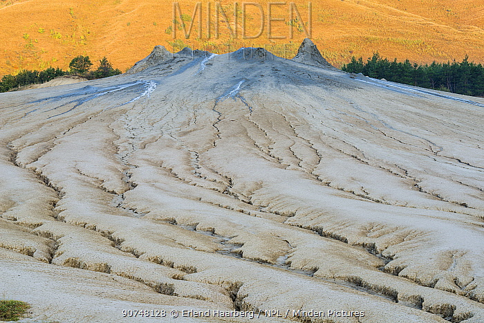 Mud formations at the 'mud volcanoes' where gases emerge from the deposits below. Buzau county, Sub-Carpathians, Romania.
