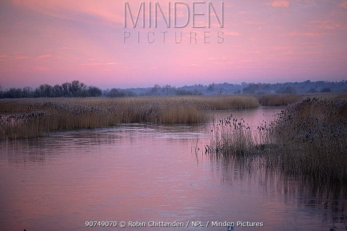 Strumpshaw Fen RSPB reserve at dawn, Norfolk, UK January