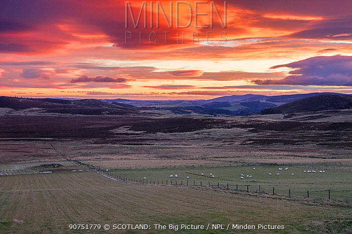 Mosaic of agricultural land, forestry and moorland at sunrise, Aberdeenshire, Scotland, UK, December 2015.
