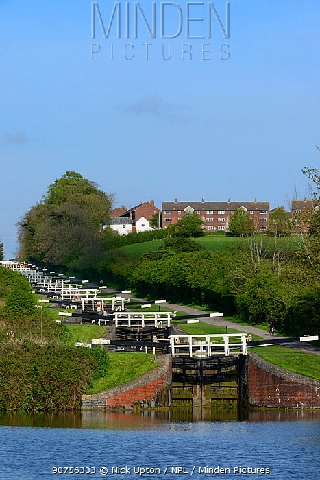 Flight of 16 locks up a steep hill on the Kennet and Avon canal, Caen Hill, Devizes, Wiltshire, UK, April 2014.