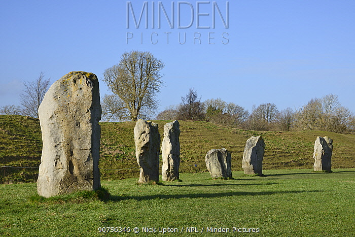Neolithic megaliths, Avebury Stone Circle, Wiltshire, UK, February 2014.