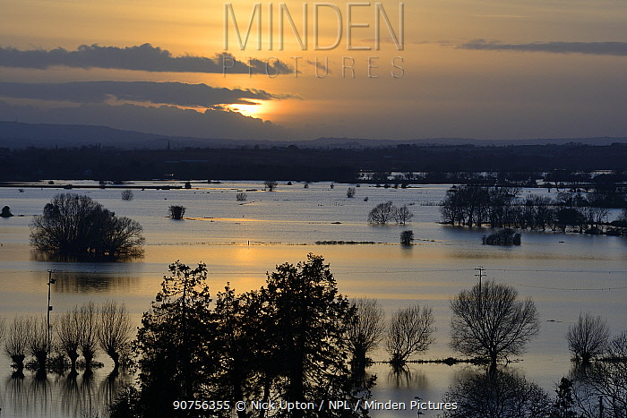 Overview of flooding across Lower Salt Moor and North Moor at sunset, seen from from Barrow Mump, Burrowbridge, Somerset Levels, England, UK, February 2014.