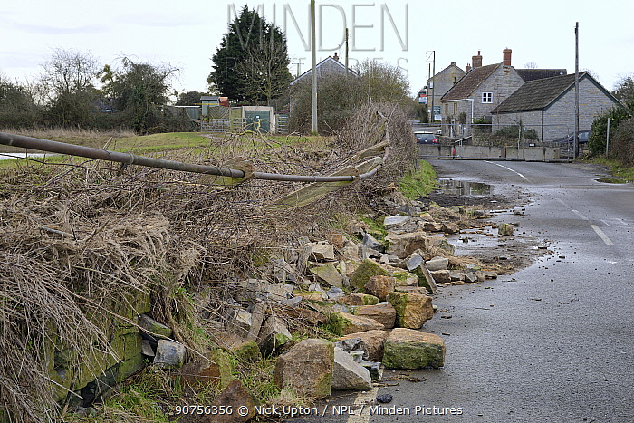 Road closed and collapsed stone wall caused by serious flooding after weeks of heavy rain, Long Lode, Somerset Levels, UK, February 2014.