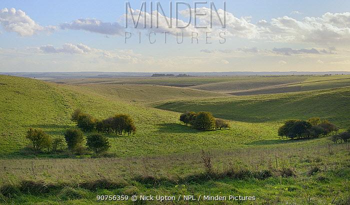 Overview of Salisbury Plain chalk downland M.O.D firing ranges, Wiltshire, UK, October 2013.