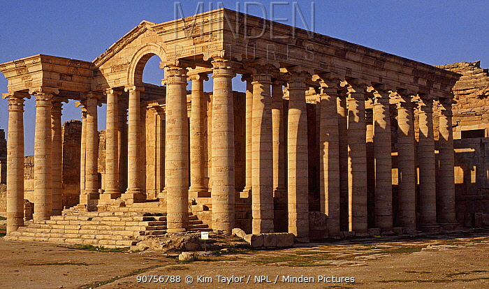 Ancient Assyrian temple at Hatra (al-Hadr) northern Iraq, 2nd Century BC. Iraq. In 2014 Hatra was taken over by Islamic State militants and much of the site was destroyed in 2015.