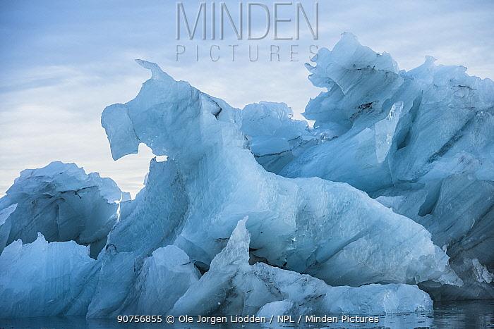 Iceberg in shape of dog, isfjorden, Spitsbergen, Svalbard, Norway September