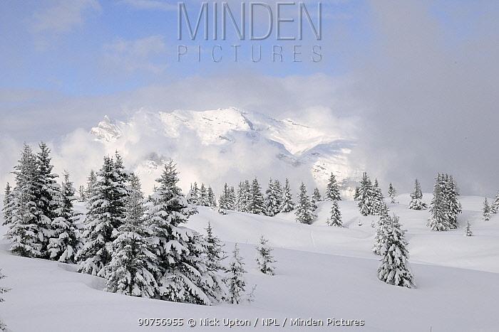 Alpine landscape after fresh snow, Hauteluce, Haute-Savoie, France, February 2013.