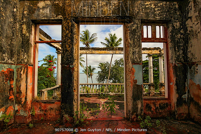 Looking out at the ocean from the inside of a building destroyed during the civil war; Mossuril, Mozambique.