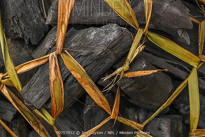 Bundle of charcoal tied up with grass in northern Mozambique.