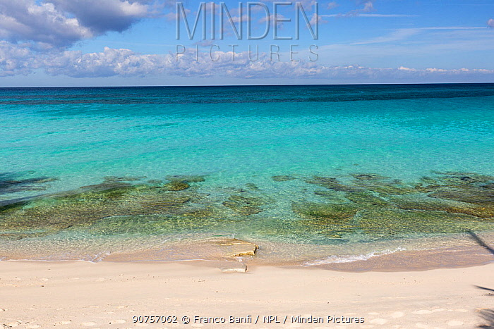 Calm sea and beach, South Bimini, Bahamas. The Bahamas National Shark Sanctuary, West Atlantic Ocean.