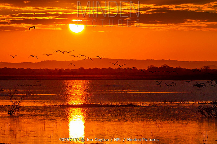 Sunset over the Sungwe Channel in Gorongosa National Park, Mozambique.