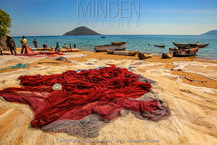 Fishing nets lie spread on the beach at Cape Maclear, Lake Malawi, Malawi.