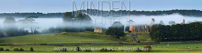 Panoramic of Old Sherborne Castle in the mist at dawn, Dorset, England, UK, August 2014.