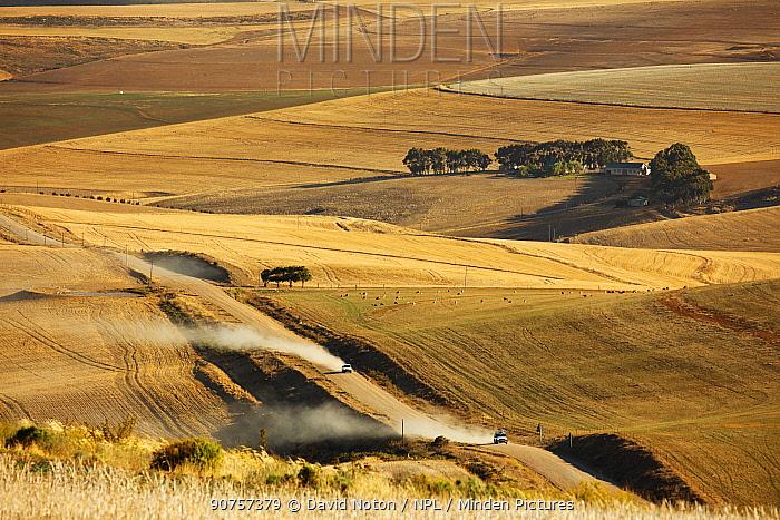 Rolling farmland in the Overberg region near Villiersdorp, Western Cape, South Africa.  December 2014.