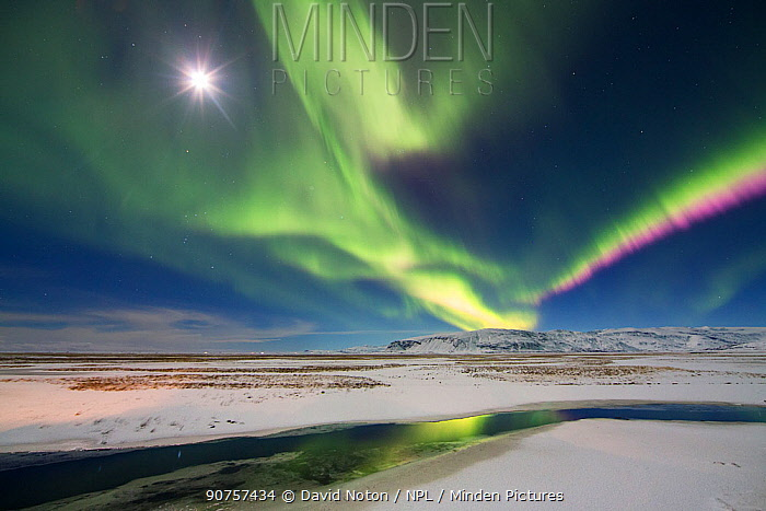 Northern Lights (Aurora Borealis) over Hornafjordur, eastern Iceland, February 2016.