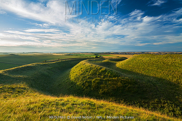 Western ramparts of Maiden Castle, an Iron Age hill fort near Dorchester, Dorset, England, UK, July.