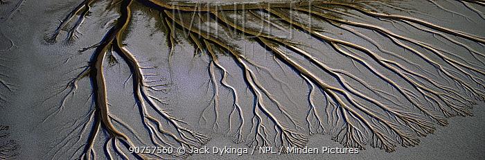 Alluvial pattern in Upper Gulf and Colorado Delta Biosphere Preserve, El Golfo, Baja California, Mexico