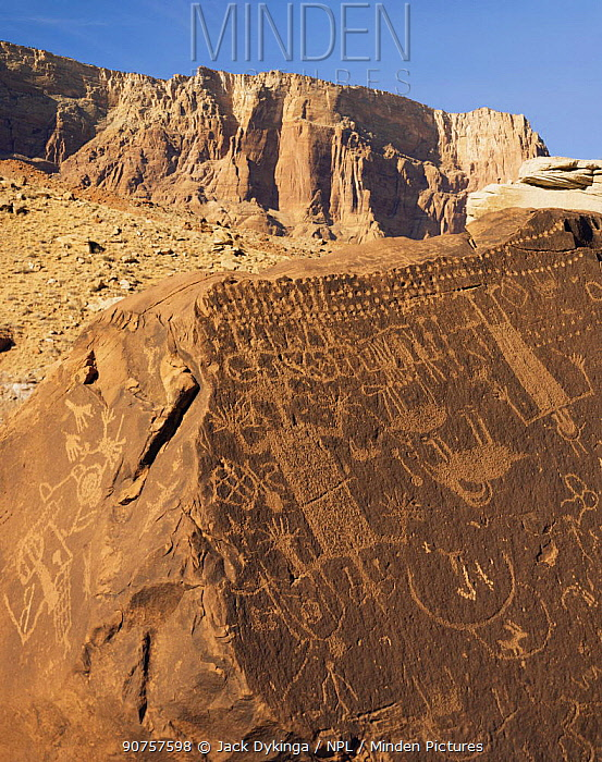 Rock carvings / petroglyphs on boulders near Lee's Ferry, Paria Canyon, Arizona, USA