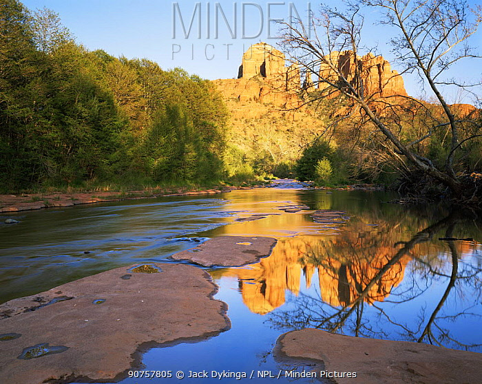Cathedral Rock reflected in water at Oak Creek Crossing, Coconino National Forest, Arizona