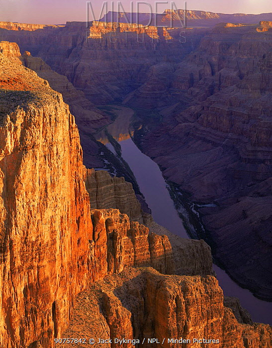 Quartermaster Canyon overlooking west into the Colorado River gorge at dawn, Grand Canyon West Hualapai Indian Reserve, Mojave Desert, Arizona, USA