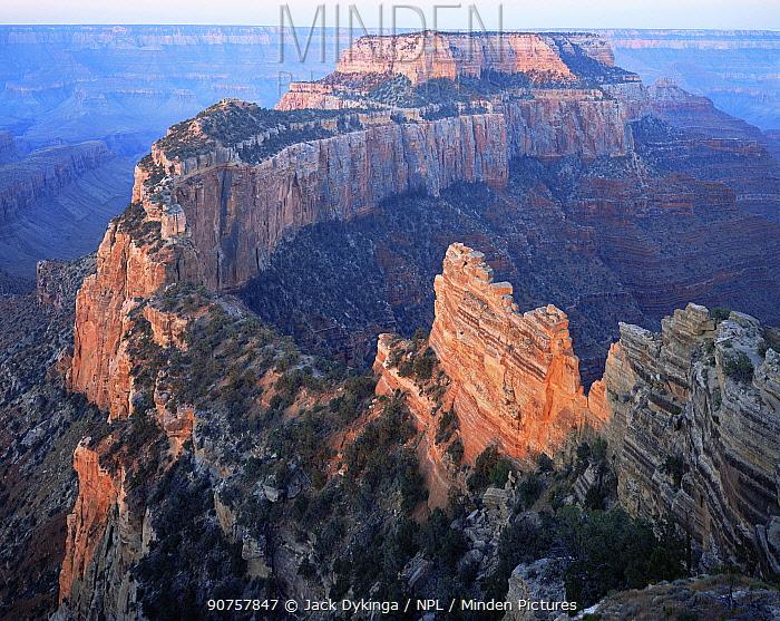 North Rim of Cape Royal at sunrise, Grand Canyon NP, Arizona, USA