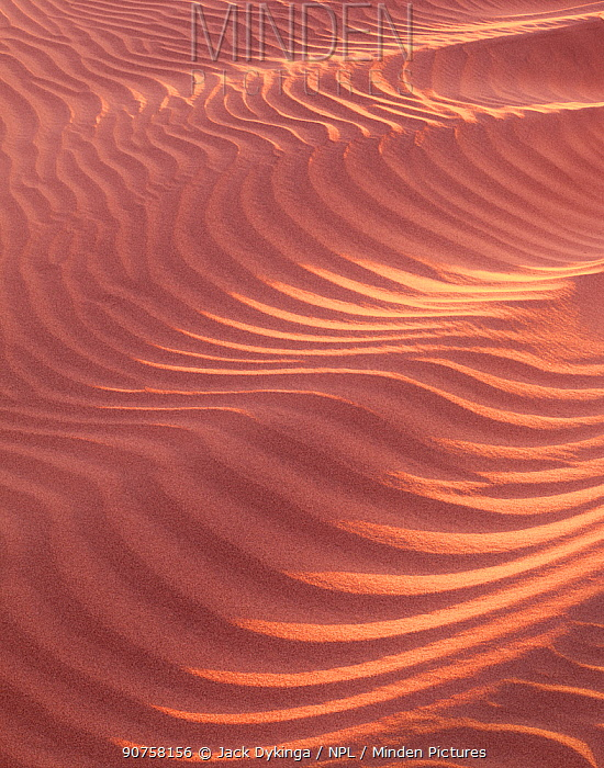 Sand dunes with patterns caused by wind, Mosquito Flats, Death Valley National Park, California, USA