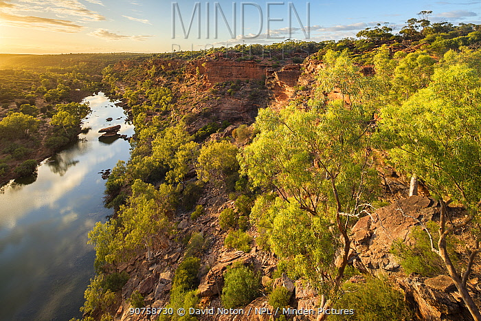 Hawk's Head Lookout over the Murchison River gorge, Kalbarri National Park, Western Australia, December 2015.