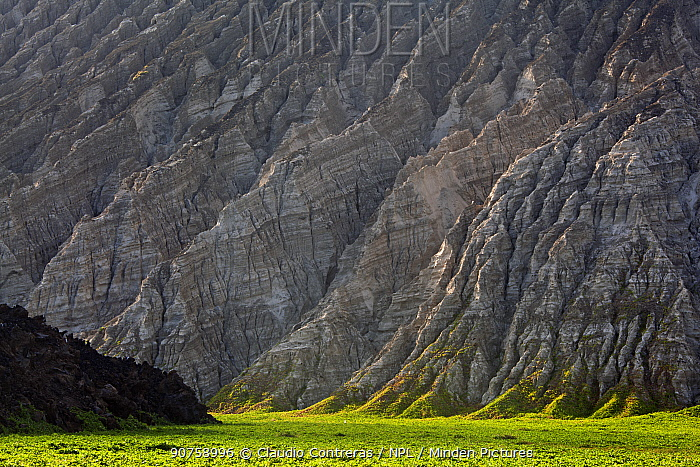 Barcena volcano slope, San Benedicto Island, Revillagigedo Archipelago Biosphere Reserve / Archipielago de Revillagigedo UNESCO Natural World Heritage Site (Socorro Islands), Pacific Ocean, Western Mexico, January