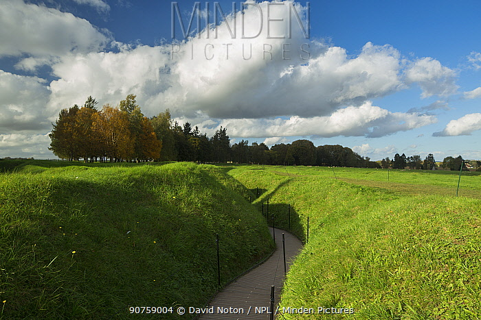Remains of trenches from the First World War at Newfoundland Memorial Park on the Somme battlefield, Beaumont Hamel, Picardy, France, October 2014.