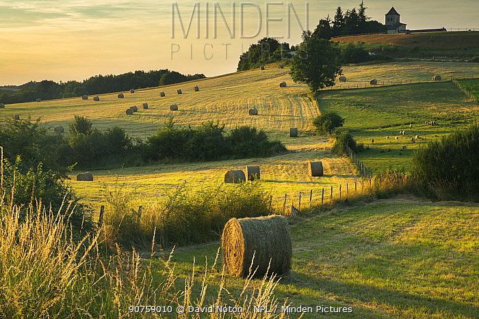 Hay bales in the fields near Beaumont du P�rigord, Pays de Bergerac, Dordogne, Aquitaine, France, June.