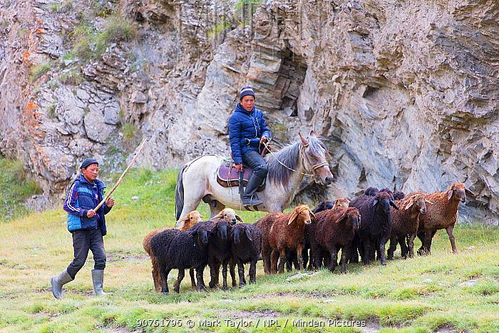 Shepherd boys at Tash Rabat. Kyrgyzstan. August 2016.