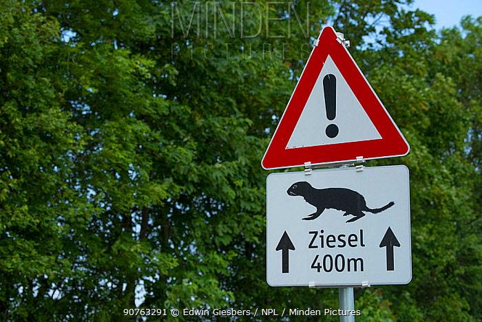 European ground squirrel / European souslik (Spermophilus citellus) road traffic warning sign, Gerasdorf, Austria.
