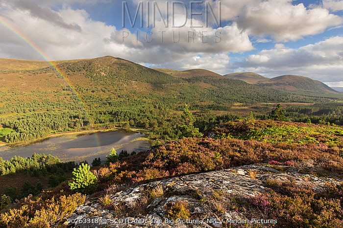 Inshriach Forest and Loch Gamnha, view south east from Creag Chait, Invereshie, Cairngorms National Park, Scotland, UK, August 2016.