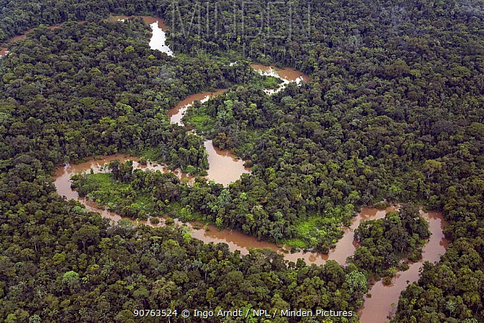 Aerial view of Rio Yavari, Amazonia, Peru FOR SALE IN UK ONLY