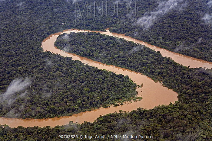 Aerial view of meanders in Rio Yavari, Amazonia, Peru FOR SALE IN UK ONLY