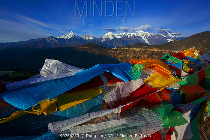Prayer flags, Mount Kawakarpo, Meili Snow Mountain National Park, Qinghai-Tibet Plateau, Yunnan Province, China. November 2009