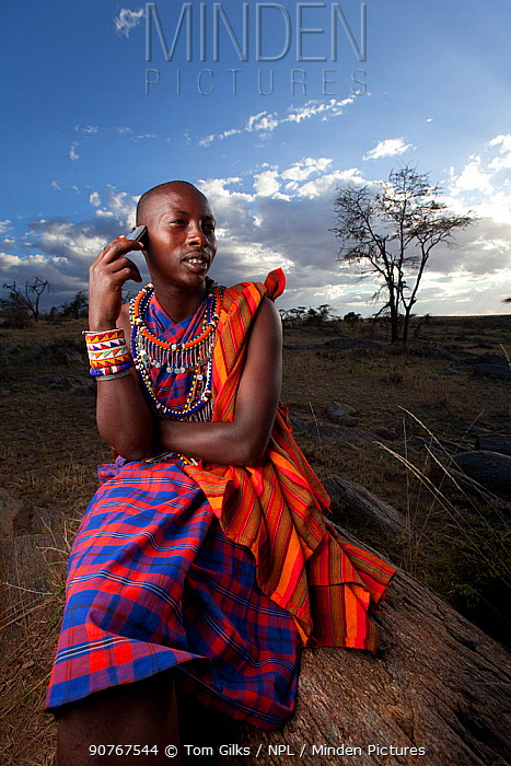 Maasai man using mobile phone, Mara region, Kenya, September 2013.