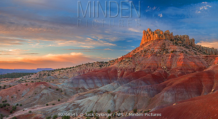 Landscape of eroded sandstone rock formations, Grand Staircase-Escalante National Monument, Utah, USA, October 2013.