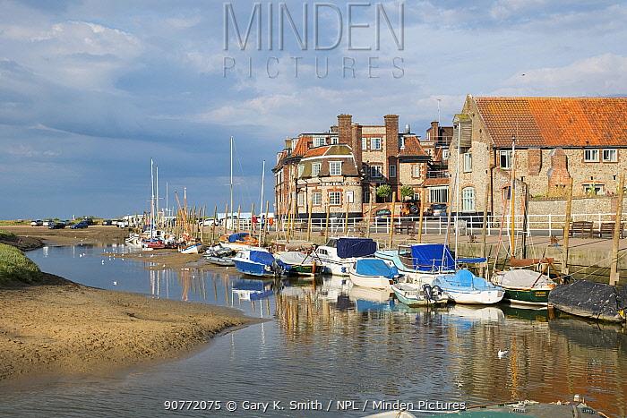 Blakeney harbour, Norfolk, England, UK. July 2016.