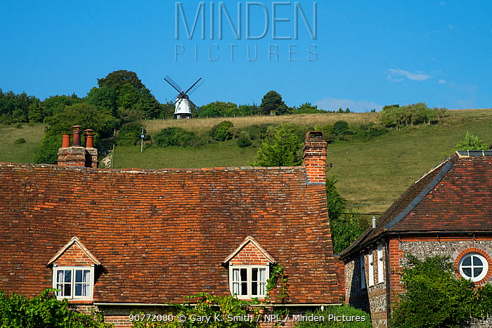 Turville Village showing the gravestones and Cobstone windmill in th distance, The Chilterns, Buckinghamshire, England, UK. September 2016.