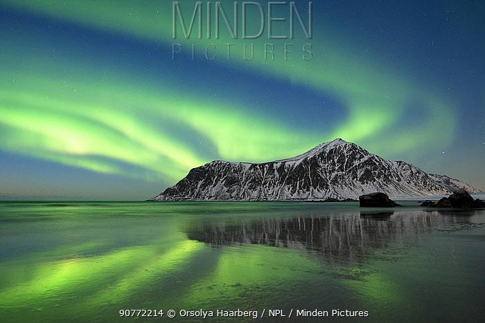 Northern lights in sky over Skagsanden beach, Flakstad, Lofoten Islands, Norway.