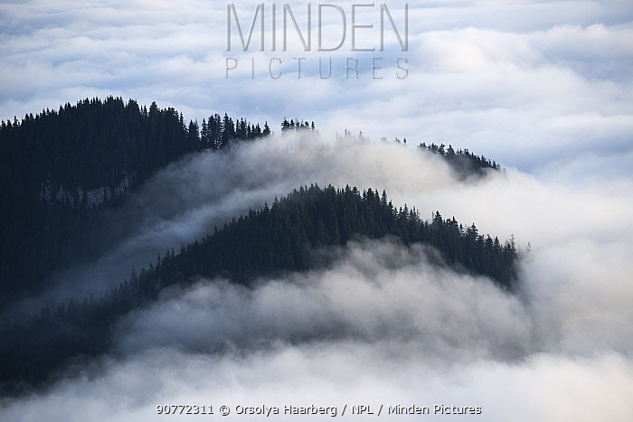 Low lying cloud  in the Piatra Mare Mountains, Transylvania, Romania. October 2011.