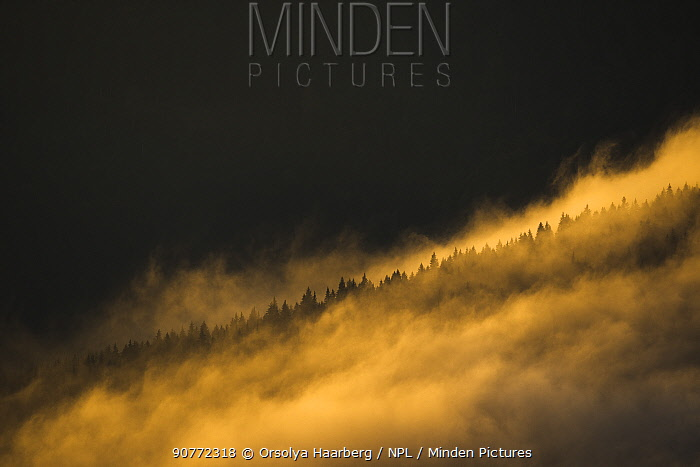 Foggy autumn landscape photographed from the Piatra Mare Mountains, Transylvania, Romania. October 2011.